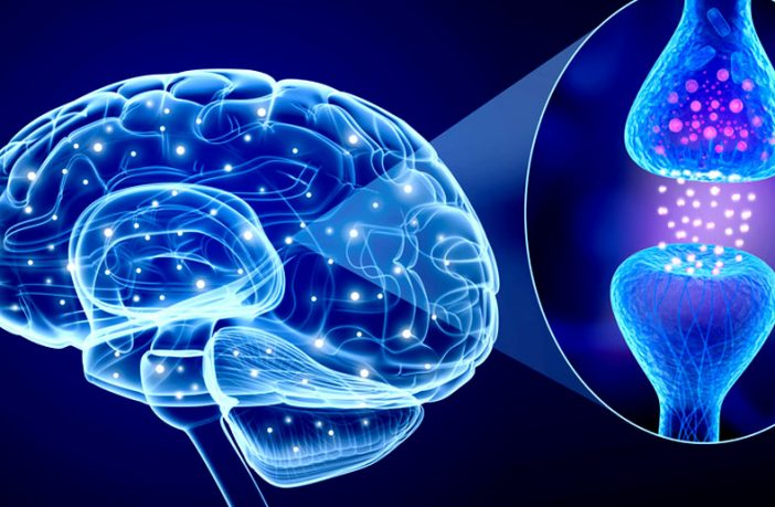 Neuroplasticity and ADHD